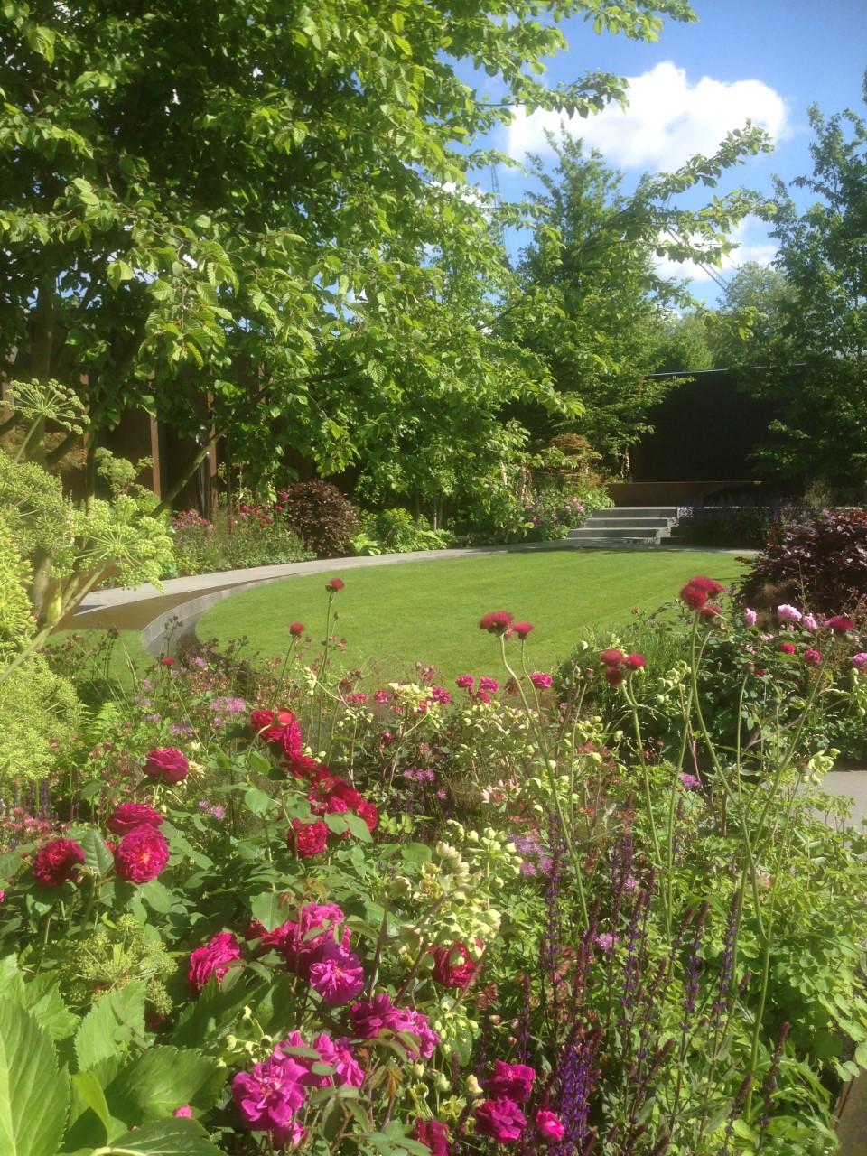 Jo Thompsons garden