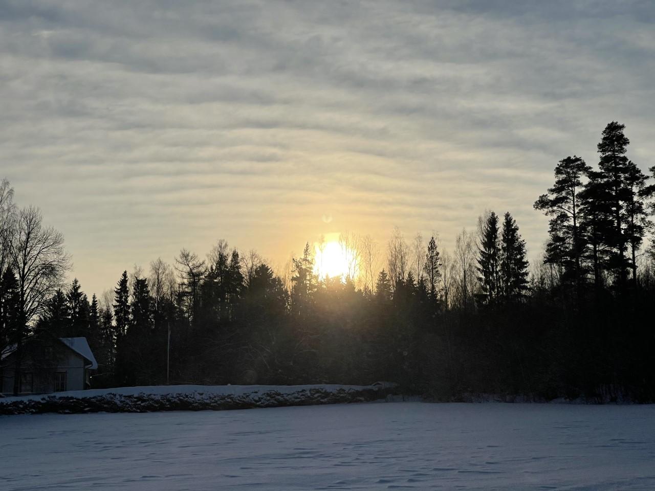 talvi _ tieltä