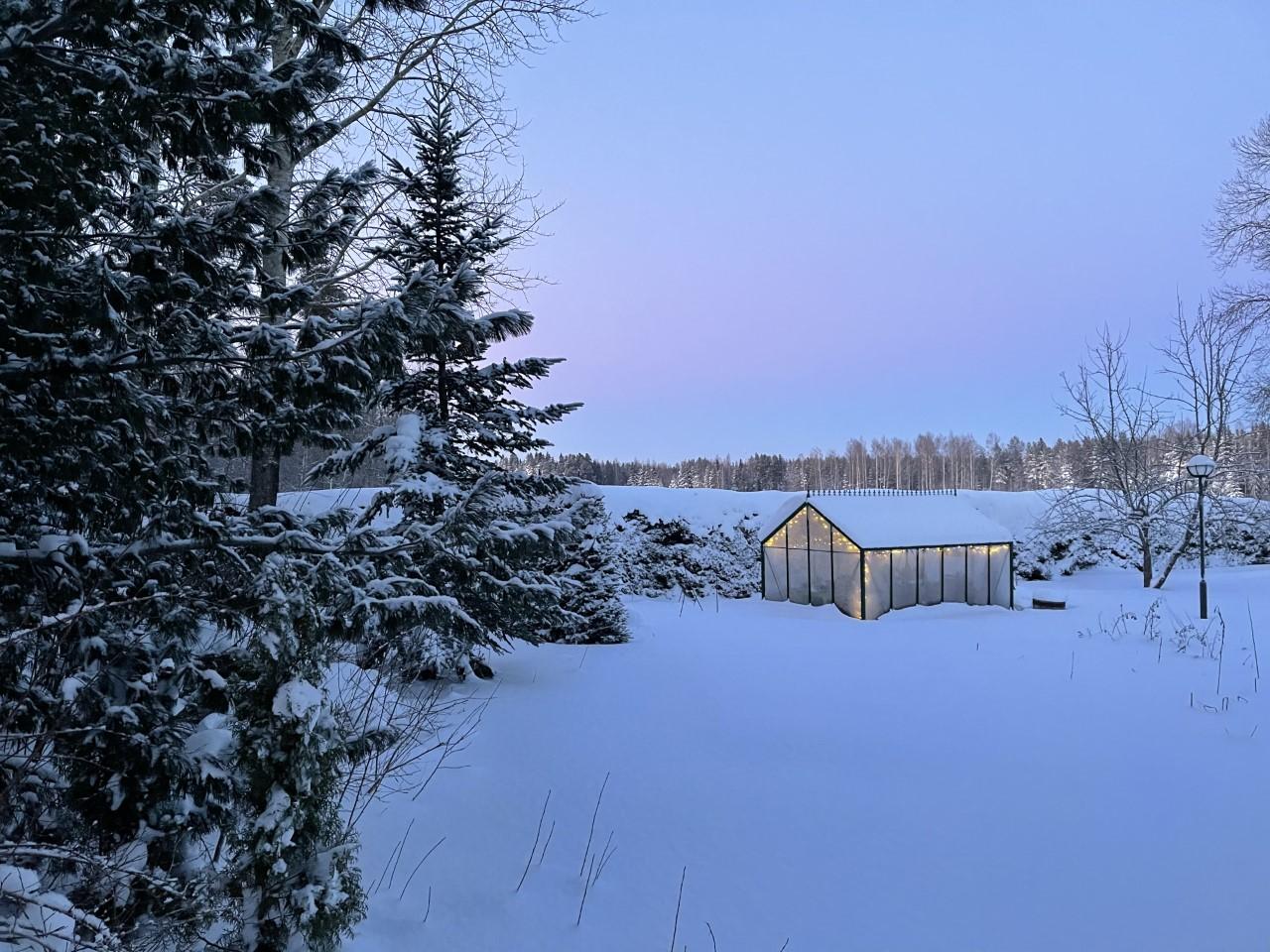 talvi21 kasvihuone